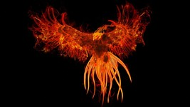 Haunted Custom Conjure Phoenix : Spiritual Companion : Spiritual Family ... - $150.00