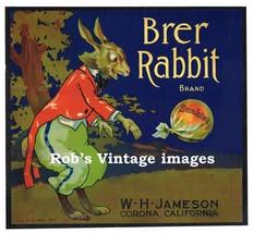 Brer Rabbit Sunkist Orange Fruit Crate Label Art Print W H Johnson Corona CA - $9.89