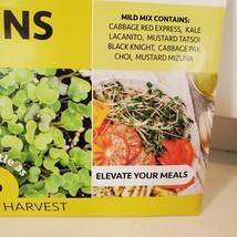 Fox Planter with Microgreens Seed Kit, gardening gift, ceramic animal planter image 8