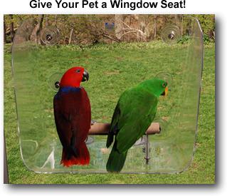 Your Pet Bird/'s Favorite Wingdow Seat