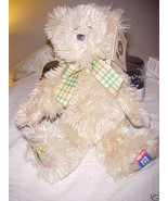 BOYDS BEAR AMERICAN CANCER SOCIETY WITH TAGS - $9.99