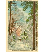 Winter time on one of the Trails, In the Great Smoky Mountains National ... - $9.99