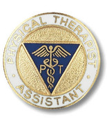 Physical Therapist Assistant Pin Caduceus Gold Plate Medical Insignia Em... - $13.55