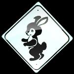 Cutez bunny