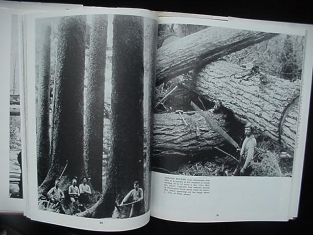 1968 Timber Book Ralph Andrews 1st Superior Edition Logging