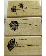 Stampin Up More Petal Prints - $12.20