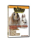 The Essential Guide to Caring For Your Rabbit Pet Dvd - $12.00