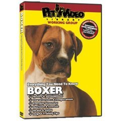 Everything You Should Know: Boxer  Pet Dvd