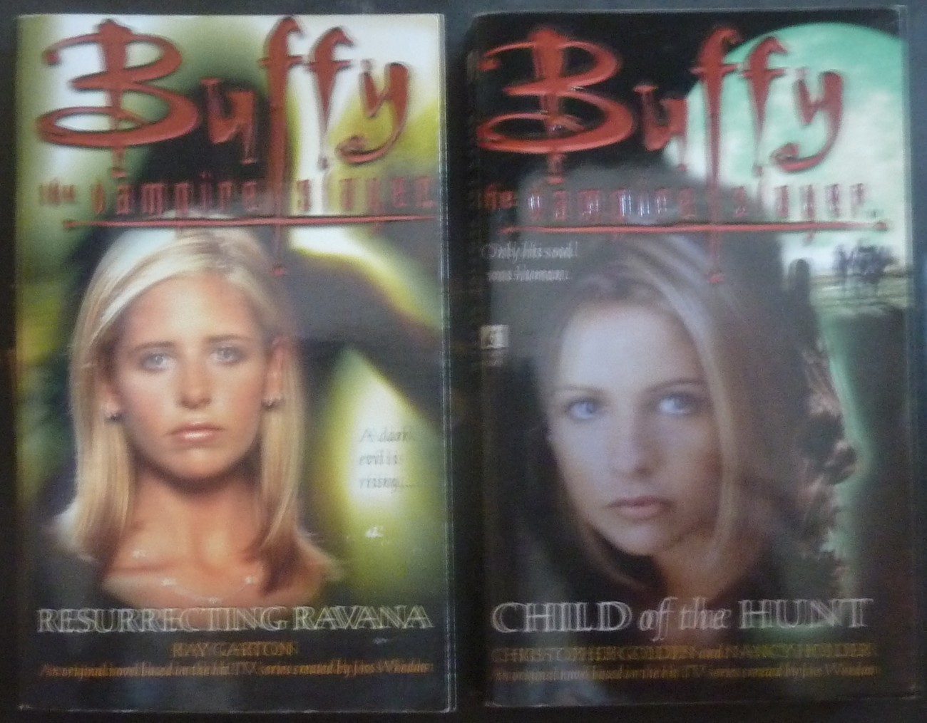 13 Buffy the Vampire Slayer Pretty Maids all in a Row by Christopher Golden