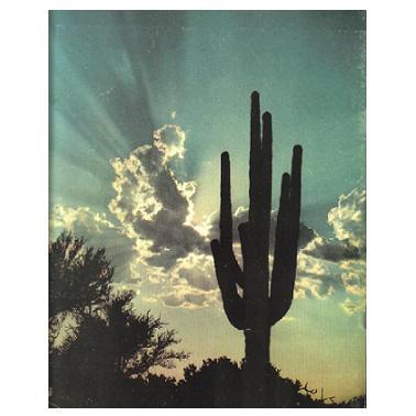Arizona Highways Antiquarian Collectible Nov 1958 Magazine