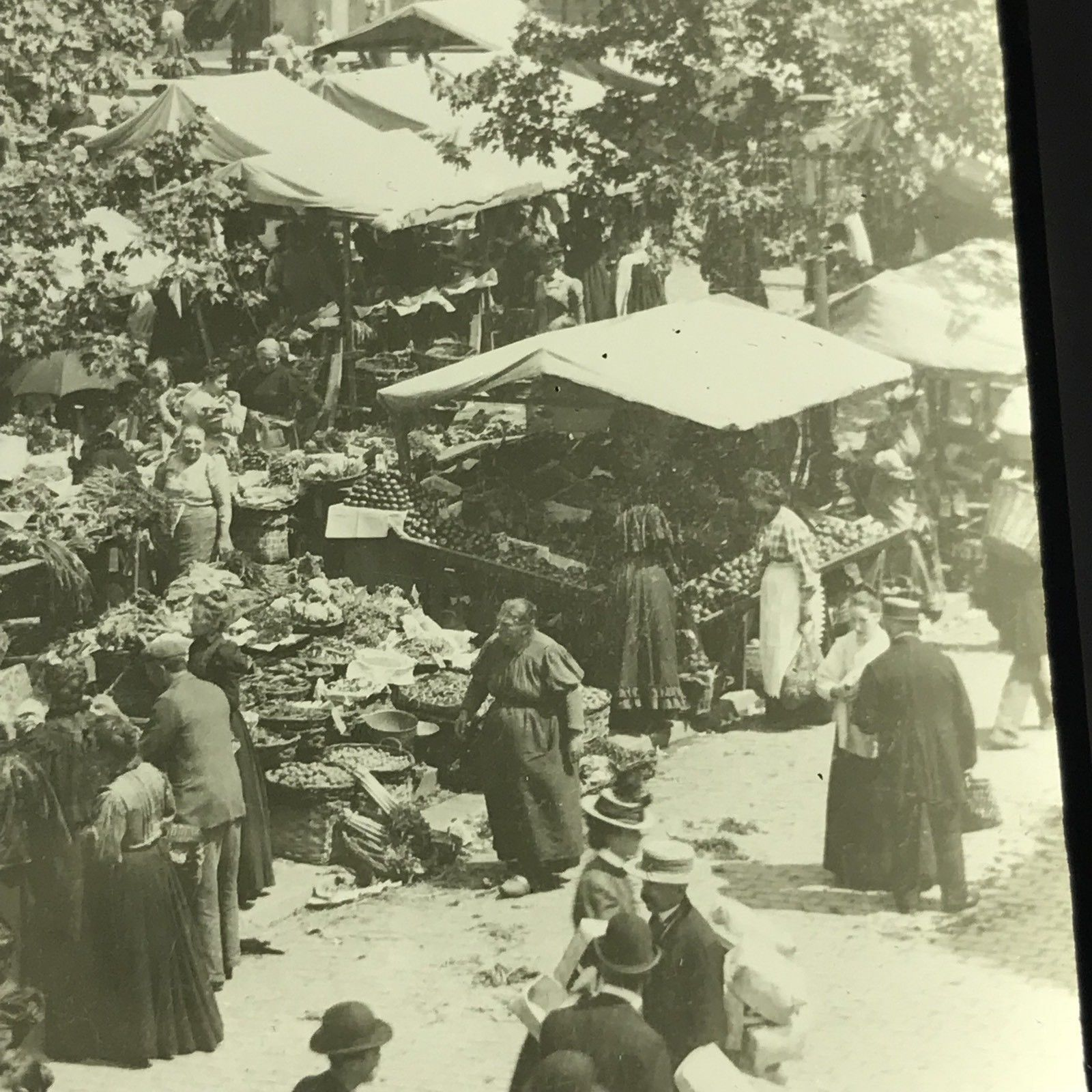 Vtg Keystone Magic Lantern Slide Photo Vegetable Market Brussels Belgium