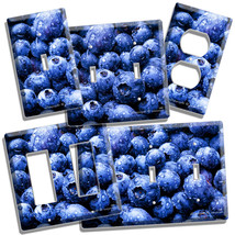 Blueberry Berries Kitchen Dining Room Decor Light Switch Outlet Wall Plate Cover - $9.99+