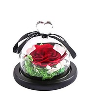 MAMS Preserved Real Rose in Glass Dome Gift Eternal Flower - $29.00