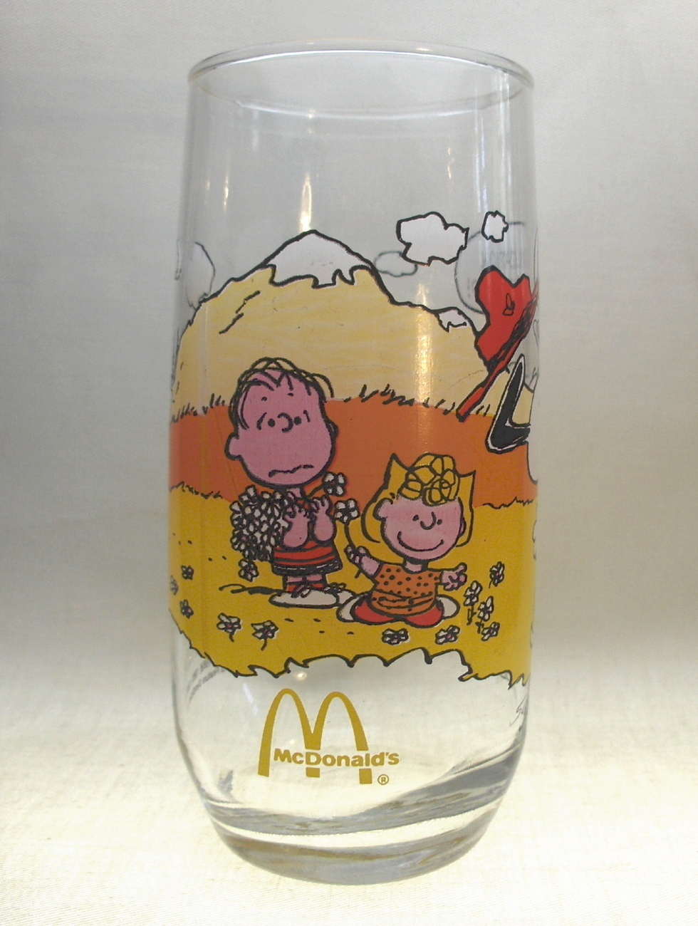 McDonalds Promo Schultz Camp Snoopy Collectors Glass
