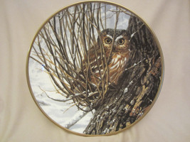 HIDING PLACE collector plate SAW WHET OWL Seerey-Lester NOBLE OWLS - $29.02
