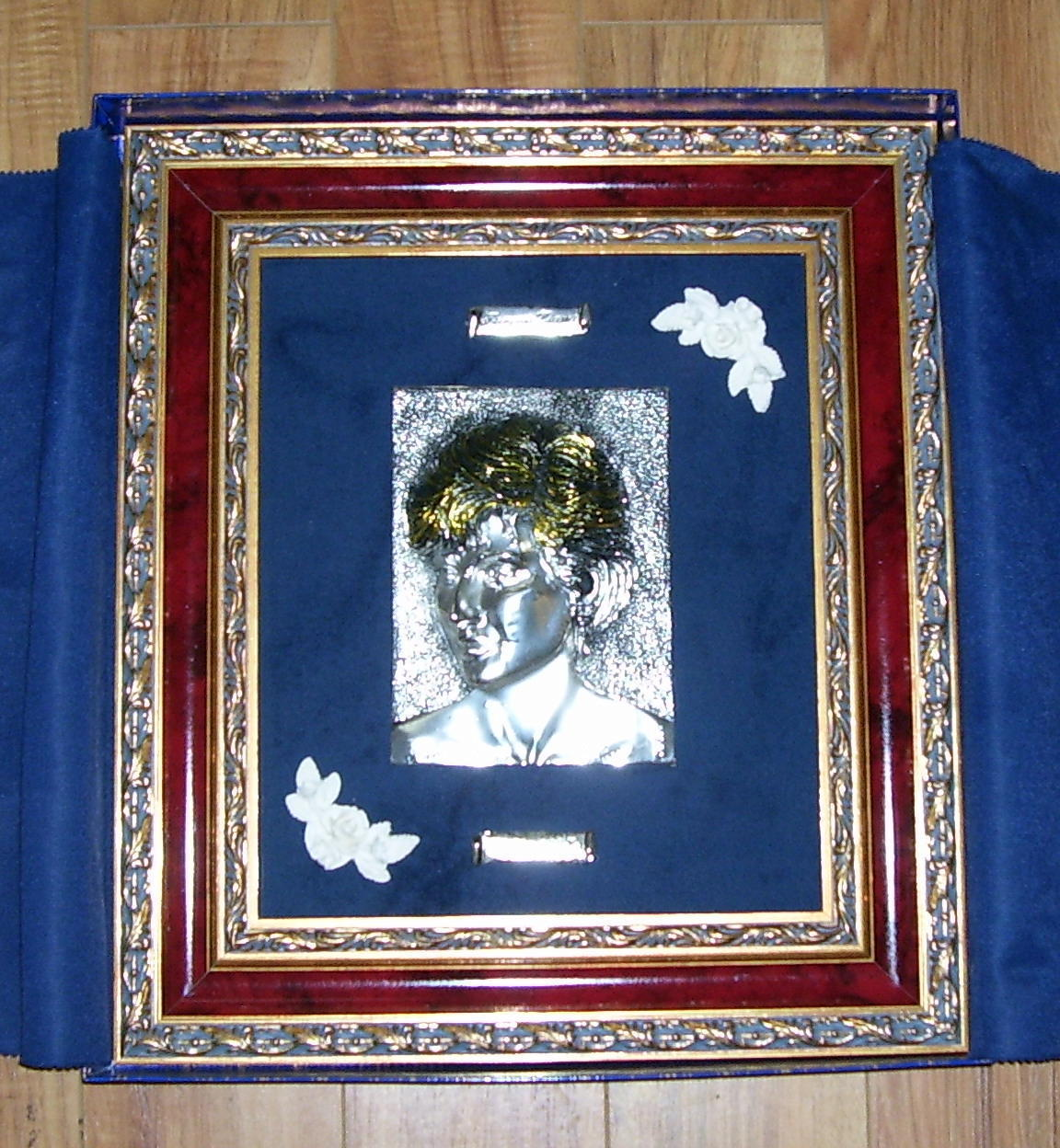 Limited Edition Princess Diana Framed Memorial with COA