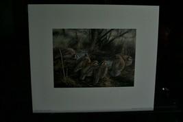 1986 Quail Foundation  Print & Stamp > LIt Edition by David Maass - $74.25