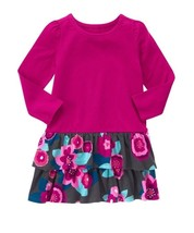 Gymboree Floral Ruffle Dress Baby & Toddler Girl Clothes 6m 12m 18m 24m 2t - $14.95