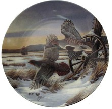 Wilhelm Goebel On Golden Wings First Light collector plate CP1601 - $38.75