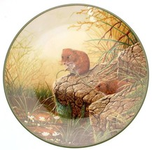 c1988 Royal Doulton Foraging Bank Voles Rollinsons Portraits of Nature TN193 - $35.87