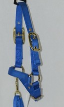 Valhoma Corporation Sheep Halter Adjustable Chin Strap 5 Foot Lead Blue image 2