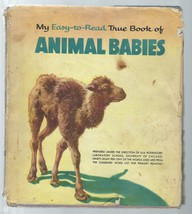 My Easy-To-Read True Book Of Animal Babies;By Illa Podendorf; Pauline Ad... - $13.97