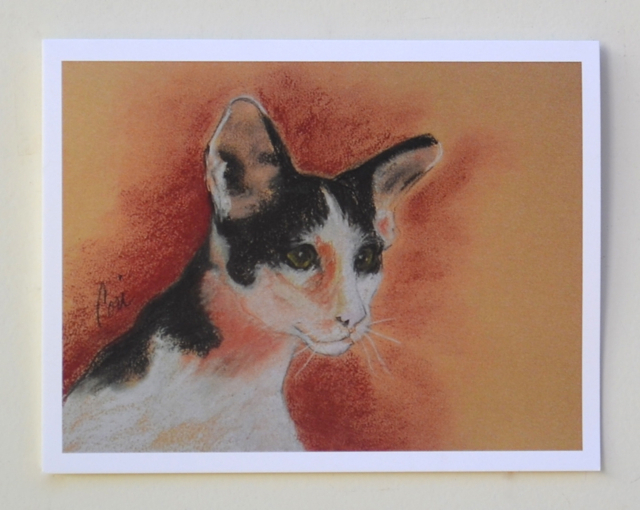 Primary image for Oriental Shorthair Cat Art Note Cards Solomon