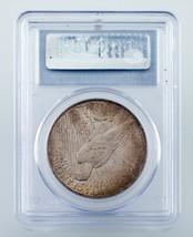 1923 Argent $1 Dollar Paix Gradé par PCGS comme MS-62 ! Joliment Tons Pièce ! image 2