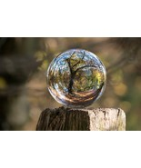 Tree Reflection in Orb -  Art Picture Poster Photo Print 18TRE - $14.99+