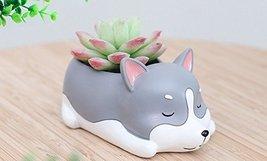 Animal Husky Shaped Cartoon Home Office Decoration Succulent Vase Flower... - $10.99