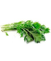 1 oz of Asian Greens Organic Mizuna Plants - $34.16