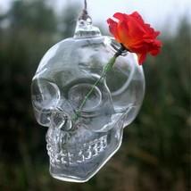Hanging Transparent Glass Skull Vase Flower Pot Demon Home Decor Ball Sc... - $21.00