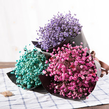 JINGYANGBEI Imported dried flower wedding home decoration - $35.95