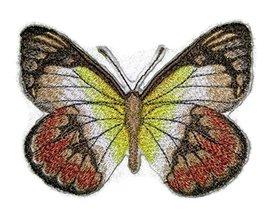 BeyondVision Custom and Unique Amazing Colorful Butterflies[Scarlet Jeze... - $5.93