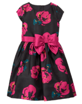 Gymboree 12 Holiday Dressed Up Black Pink Rose Dressy Dress NWT Portrait - $20.56
