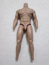 Terminator T-800 Body MMS 136 1/6th Scale Accessory - Hot Toys 2010 - $81.27