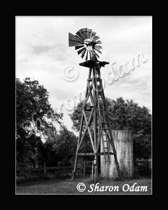 Wm 0027 bw windmill yancey01