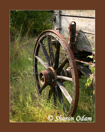 Wagon Wheel ~ MS0064C ~ Fine Art Photography