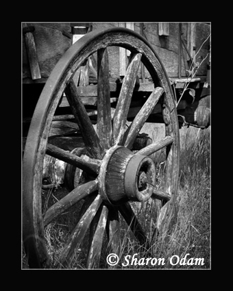 Ms 0062 bw wagonwheel lrg