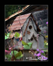A Rustic Country Birdhouse - MS0052C1 - Fine Art Photography - $17.50