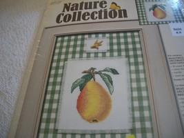 Pear Cross Stitch Kit - $12.00