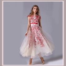 Sheer Voile Overlay Embroidery Lace Organza Red or Blue Princess Ball Prom Gown image 3