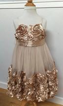 SATIN ROSE Flower Girl PARTY DRESS Mesh Tulle Net BONNIE JEAN Shimmery C... - $43.46