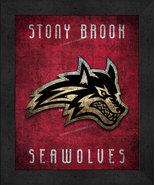 "Stony Brook Seawolves ""Retro College Logo Map"" 13x16 Framed Print  - $39.95"