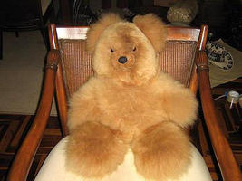 Bear6 thumb200