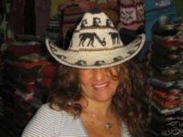 Stetson hat made of Alpaca fabric - $26.00