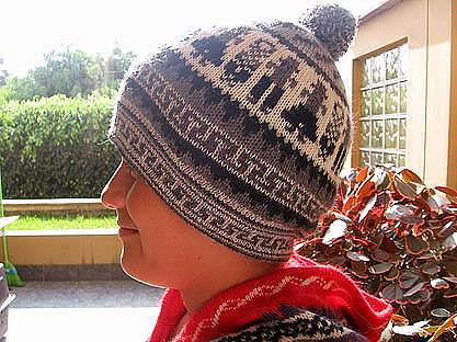Woolly Hat, hat of alpacawool knitted,