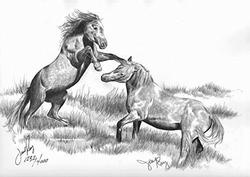 "Primary image for  ""Fighting Stallions"" By Jesse Ray"