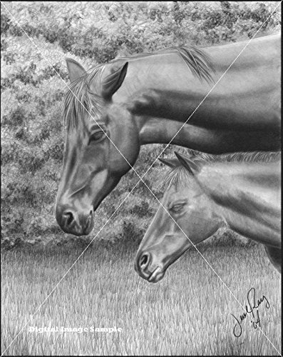 "Primary image for  ""Mother and Foal"" By Jesse Ray"