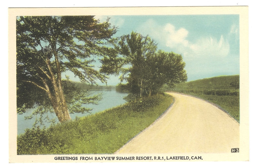 Primary image for Postcard  Greetings From Bayview Summer Resort R.R. #1  Lakefield Ontario